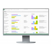 Eizo FlexScan EV2450-GY EcoView Series